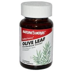 tures Herbs Olive Leaf-Power by Nature's Herbs - 30 Capsules