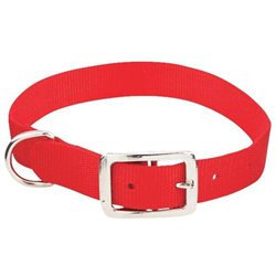 1 By 22 Inch Buckled Dog Collar 31422 by Westminster Pet Products