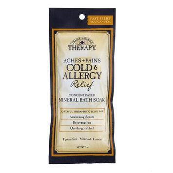 VILLAGE NATURALS THERAPHY™ Cold & Allergy Relief Mineral Bath Soak