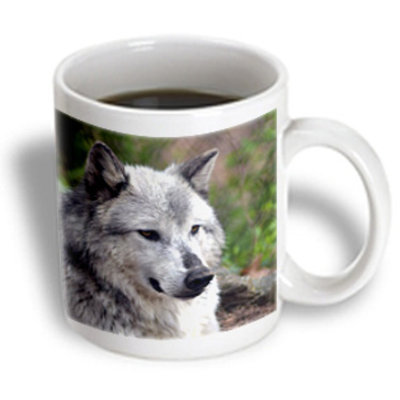 Recaro North 3dRose - WhiteOak Photography Wolves - Grey Wolf Posing - 15 oz mug