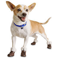 Petco Wag-a-tude Brown Moccasin Dog Shoes, Medium