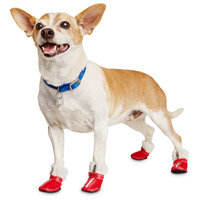Petco Pup Crew Quilted Zip Red Dog Shoes, Small