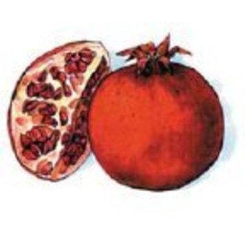 La Tee Da La-Tee-Da Perfectly Pomegranate Fragrance Lamp Oil 16 Oz