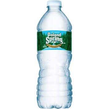 Poland Spring Natural Spring Water 16.90 fl oz