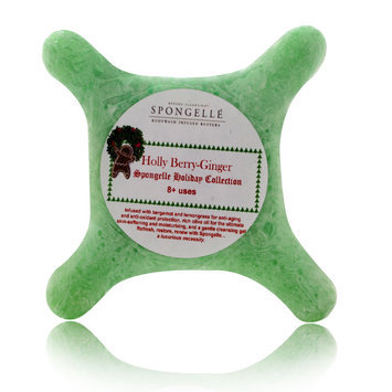 Spongeables Holiday Collection 8+ Uses Holly Berry-Ginger