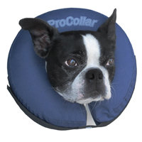 G B Marketing Inc ProCollar Premium Inflatable Protective Collar, Medium, Color: Blue