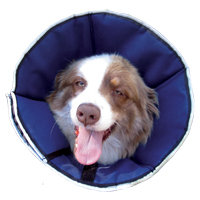 G & B Marketing Procone Soft Recovery Collar in Navy