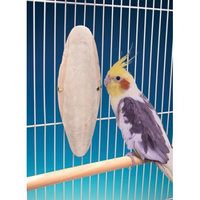 Penn Plax PP02114 Cuttlebone With Holder Super Midle & Large