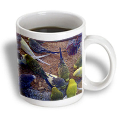 Recaro North 3dRose - Edmond Hogge Jr Birds - Cockatiels and Parakeets - 11 oz mug