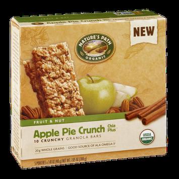 Nature's Path Organic Fruit & Nut Granola Bars Apple Pie Crunch - 10 CT