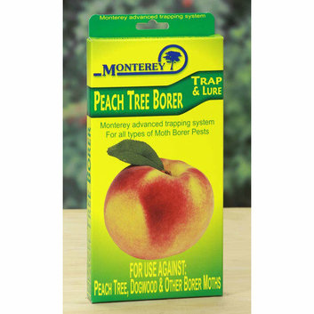 Monterey Peach Tree Borer Trap and Lure