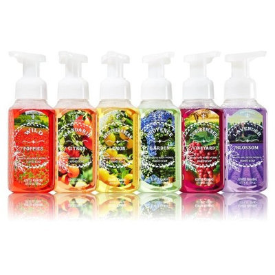 Bath & Body Works Seasonal Provence Collection Fields of France Anti-bacterial Hand Soap Kit Full Set of 6 Scents (8.75 Fl Oz each)
