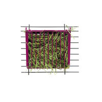 Pets International Ltd. Pts Feeder Hay Buffet w/Lid