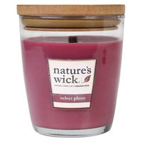 Nature's Wick Velvet Plum 10 oz Jar Candle