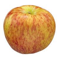 Apples Kiku