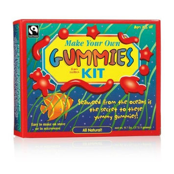 Verve Make Your Own Gummy Kit,9.7oz