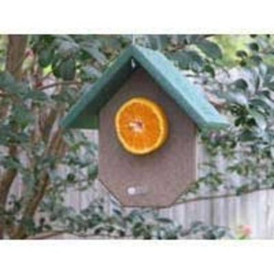 Songbird Essentials Fruit Feeder Hunter Driftwood