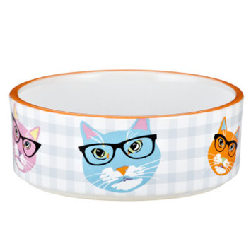Whisker CityA Glasses Cat Bowl