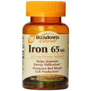 Sundown Naturals Iron Ferrous Sulfate 65 Mg, 120 Count