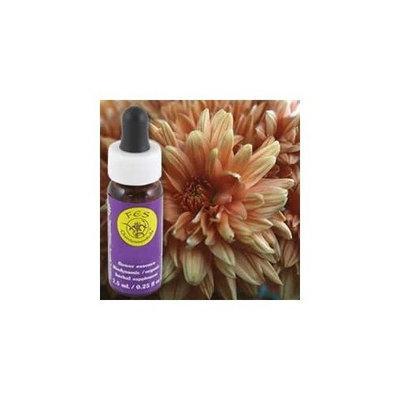 FES QUINTESSENTIALS Flower Essence Services - Chrysanthemum Flower Essence - 0.25 oz. ( Multi-Pack)