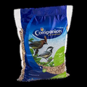 Companion Basic Blend Wild Bird Food