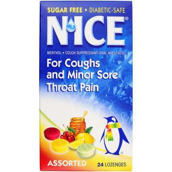 N'ice Lozenges Sugar Free Menthol Eucalyptus, Assorted 24 ea