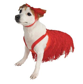 Flapper Pet Costume Size Large