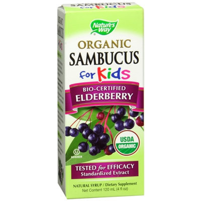 Nature's Way Organic Sambucus Kids Syrup