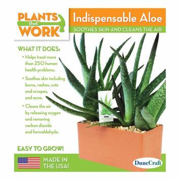 Dunecraft Indispensable Aloe