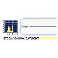 Current Usa ACU02021 Sunpaq Dual Daylight Bulb