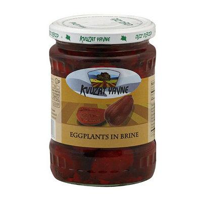 Kvuzat Yavne Eggplants in Brine