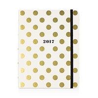2017 Medium Agenda, Gold Dots