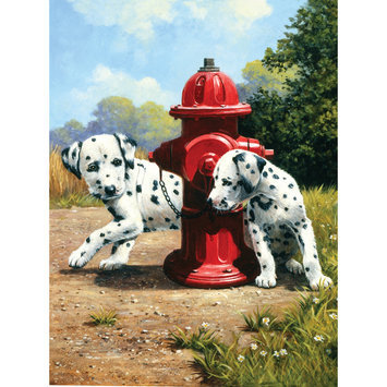 Junior A4 Peek-A-Boo Dalmations Paint By Numbers