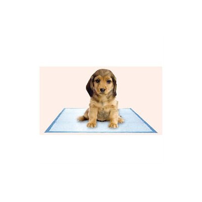 Best Publishing Company Puppy Pad (100 Pieces) Quantity: Single, Color: Pink