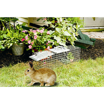 Havahart 1084 Easy Set and Release Trap Cage