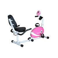 Sunny Distributor Inc Sunny Health & Fitness Pink Magnetic Recumbent Bike