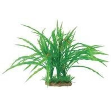 Pure Aquatic Natural Elements Cryptocoryne Combo Aquarium Ornament in Green