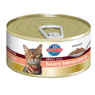 Hills Pet Nutrition Hills Science Plan Feline Adult Salmon Canned 156g x 48