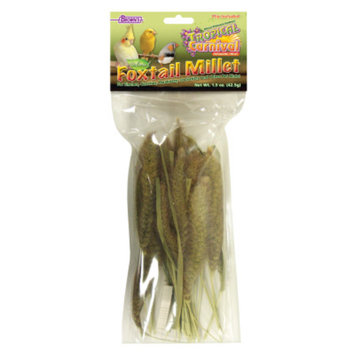 FM Browns Brown'sA Tropical CarnivalA Natural Foxtail Millet Bird Treats