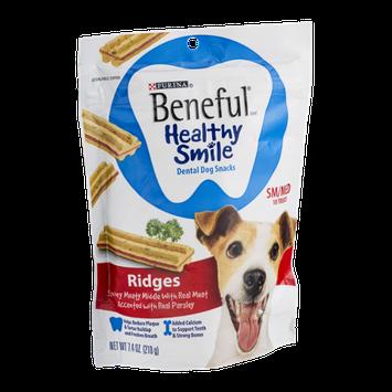 Purina Beneful Healthy Smile SM/MED Dental Dog Snacks Ridges - 10 CT