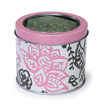 Worldwise Kathy Ireland Loved Ones Catnip Canister-Pink
