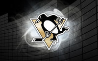 Pittsburgh Penguins Hockey Team