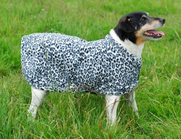 EOUS Dog Fleece in Prints Small Chocolate/Multi Color Dots