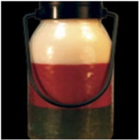 Acheerfulgiver A Cheerful Candle Simplicity Lantern - Christmas 16OZ, Red/Green