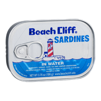 Beach Cliff Sardines in Water