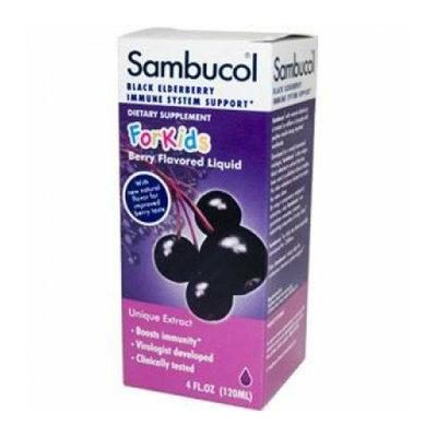 Sambucol Night Time Cold and Flu Elderberry 4 fl oz