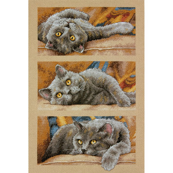 Dimensions Acquisition Llc Dimensions Max The Cat Counted Cross Stitch Kit