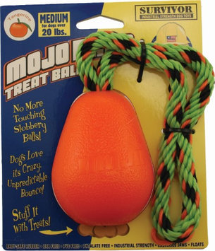 PETSPORT USA Mojo Fling Treat Ball