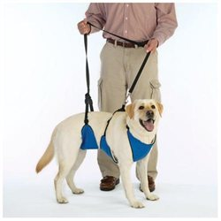 Guardian Gear Lift and Lead Dog Harness Xlarge