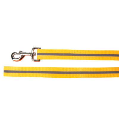 Top PawA Stripe Reflective Dog Leash